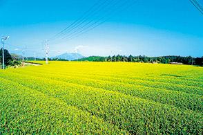 松元地域写真3
