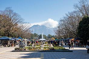 吉野地域写真2