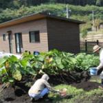 グリーンファームラウベ農園